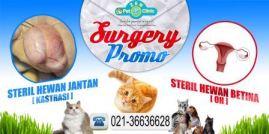 4x2 Surgerypromo