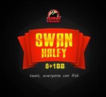 swan HALFY